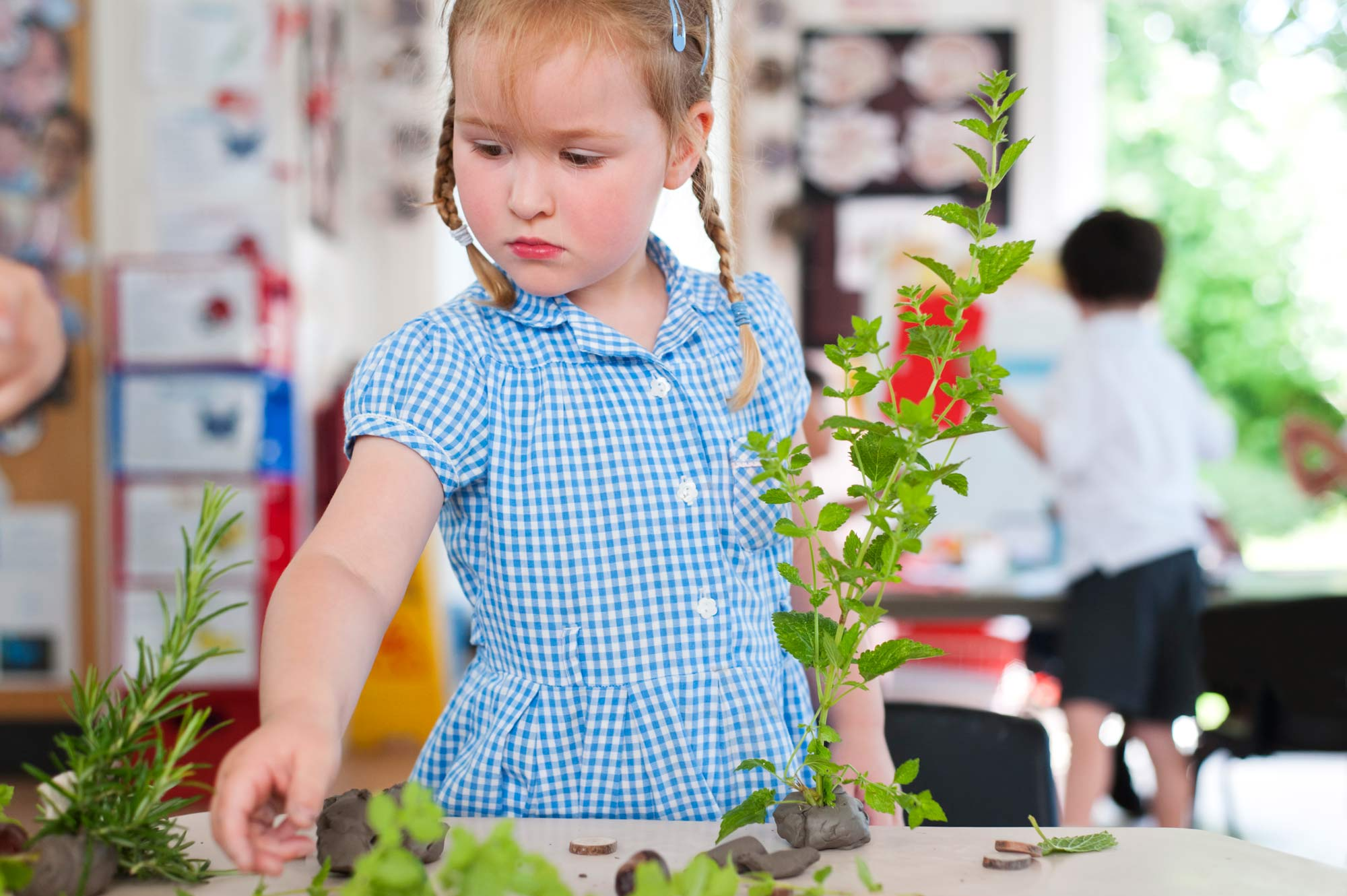 School pupil learning with plants