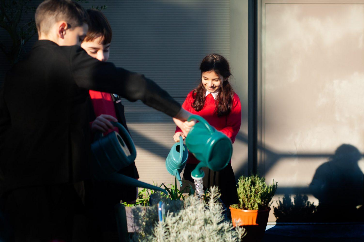 Pupils watering plants on roof garden